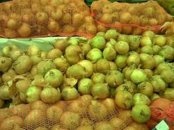 Cebula w sklepie Onion in shop