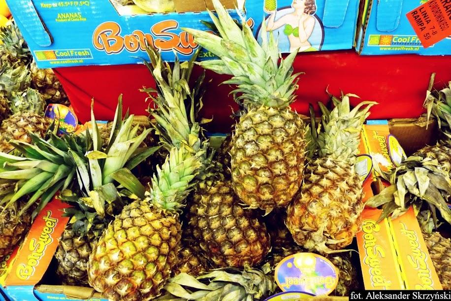 ananas comosus miniaturka