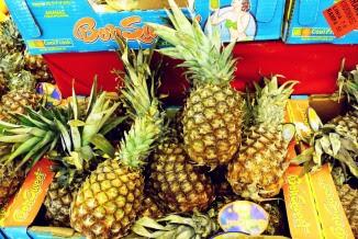 Ananas jadalny Ananas comosus