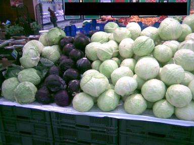 Kapusta głowiasta biała Cabbage