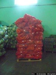 Marchew w hurtowni Daucus carota on pallet